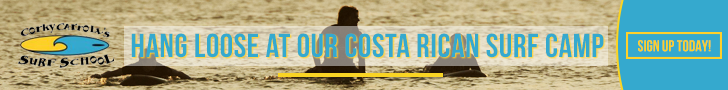 CCSS_costa728x90v1