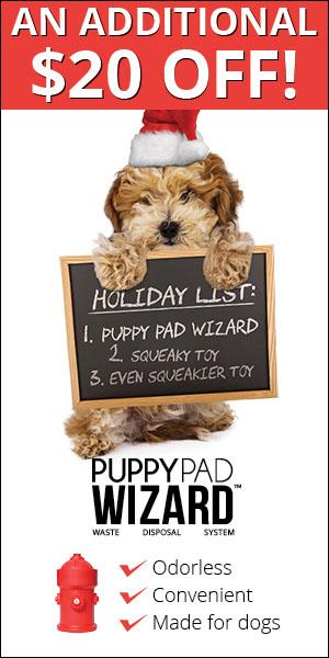PuppyPad Wizard (3)