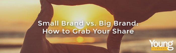 Small Brand vs. Big Brand: How to Grab Your Share