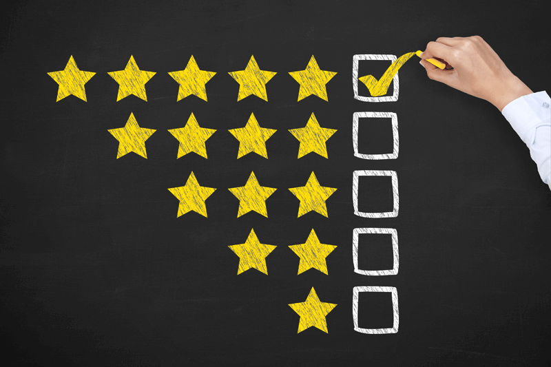 Young Company Website Evaluation Services