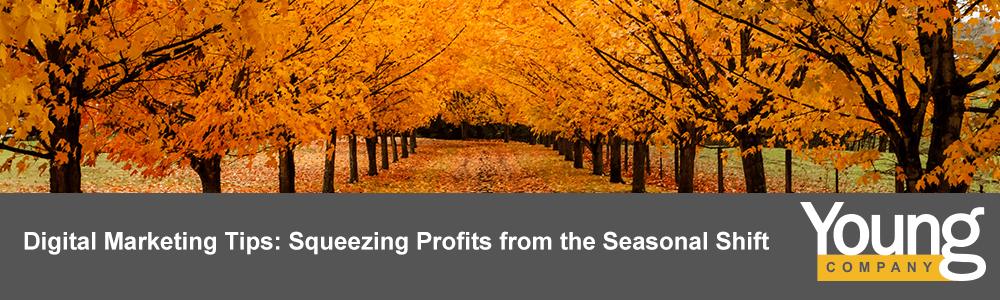 Digital Marketing Tips: Squeezing Profits from the Seasonal Shift