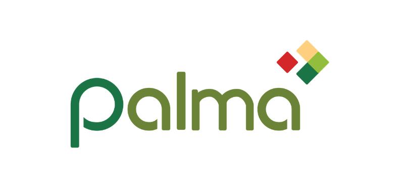Palma Financial